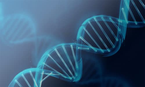Types of DNA Testing